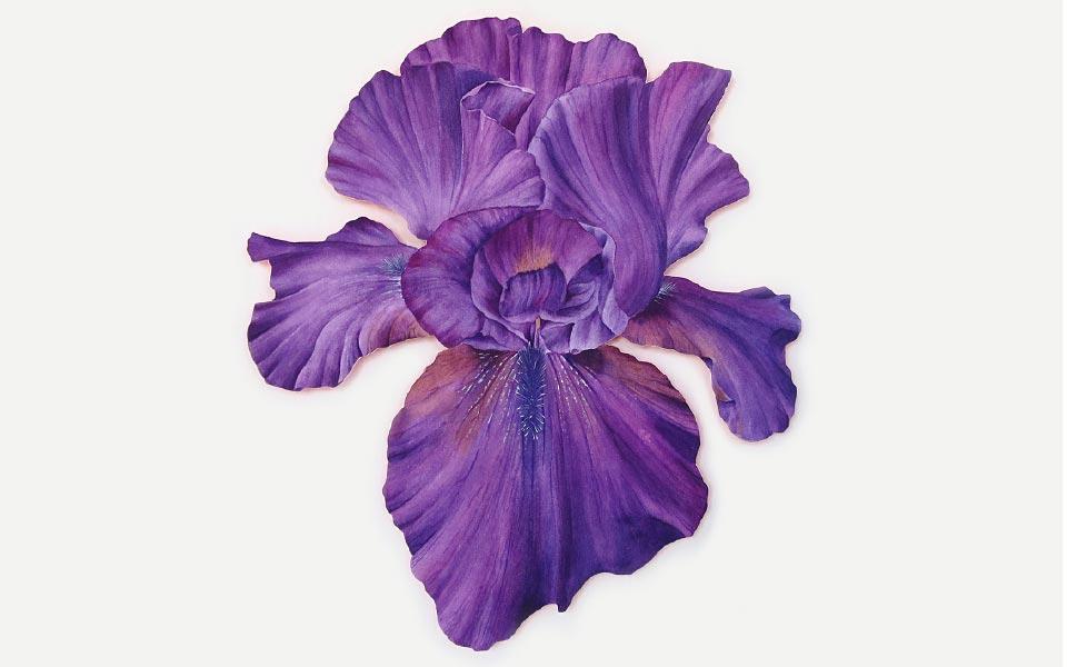 1-3 Tania Engelke Blumenmalerei