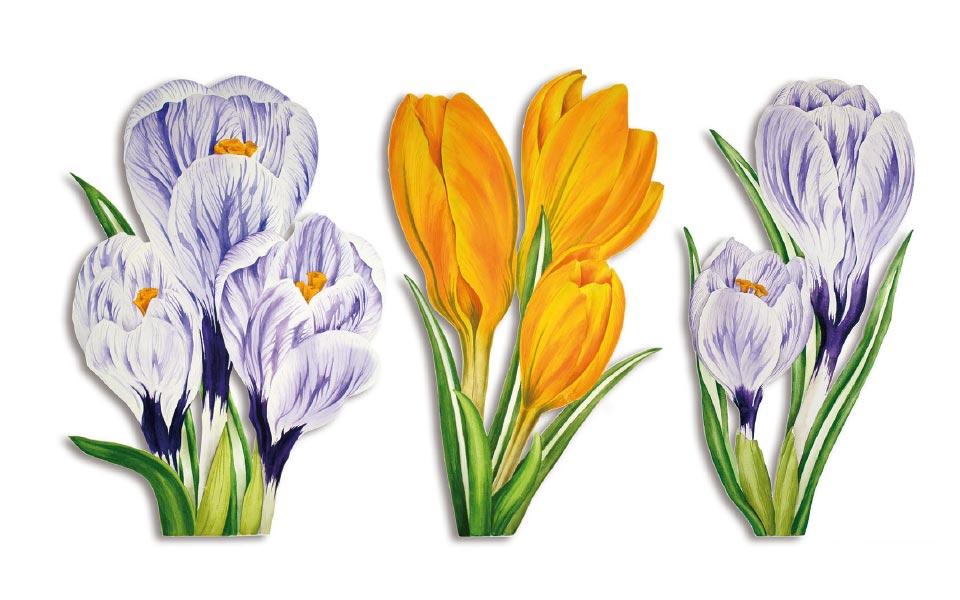 1-5 Tania Engelke Frühlingsblumen