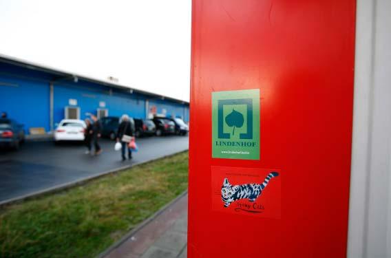 3-8 Lindenhof Sticker Spraycats