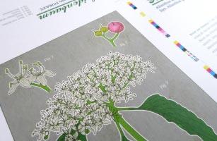 Garten für die Seele - Arboretum Heppenheim